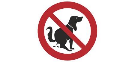 Déjections canines sur la voie publique